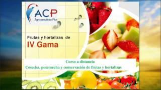 Frutas y Hortalizas de IV Gama