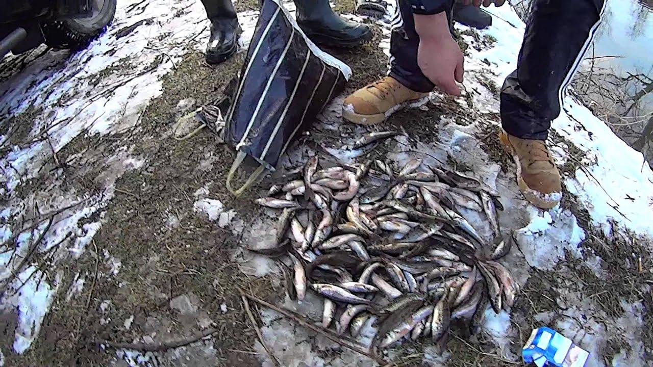 За лютий на Франківщині виявили 33 порушення правил рибальства (таблиця)