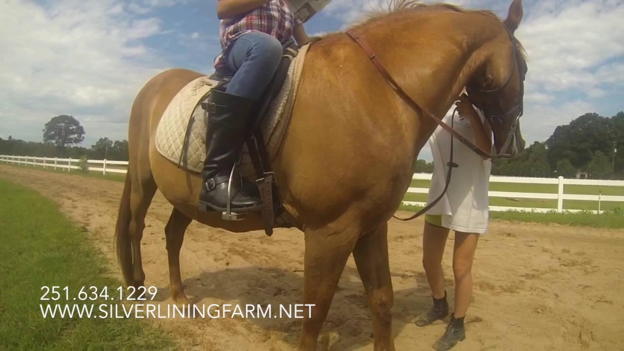 Silver Lining Farm