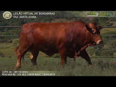 LOTE 026