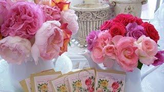 Фитодизайн | Розы Букеты цветочные Натюрморты |  Розово-винтажное настроение / Floral fantasy (HD)