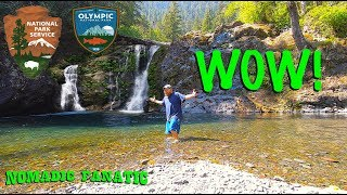 The Glorious Wynoochie ~ Olympic National Forest!