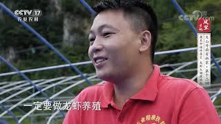 《攻坚日记》 20201214 大山外面有新家(12)|CCTV农业 - YouTube