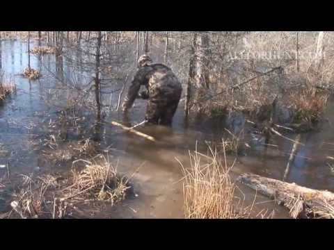 ловля бобра капканами осенью видео бесплатно