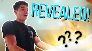 LITTLE BROTHER BIG SURPRISE REVEAL!!
