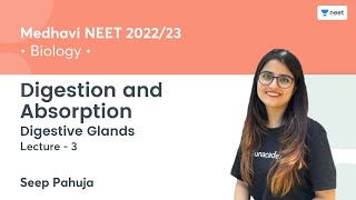 Digestion and Absorption   Digestive Glands   L3   NEET 2022/23   Unacademy NEET   Seep Pahuja