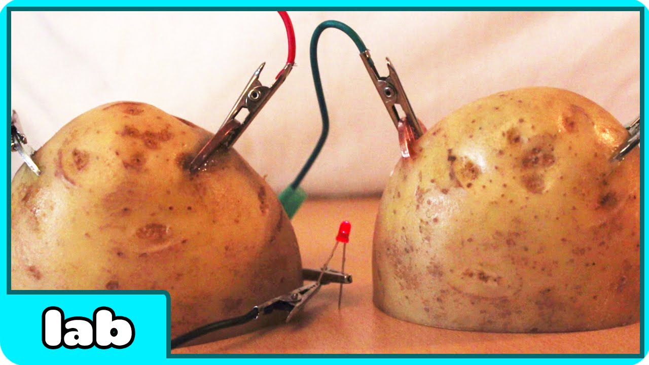 potato science project Hands-on activity: potato power contributed by: integrated teaching and this engineering curriculum meets next generation science standards (ngss) students use potatoes to (asn), a project of d2l (wwwachievementstandardsorg) in the asn, standards are hierarchically.