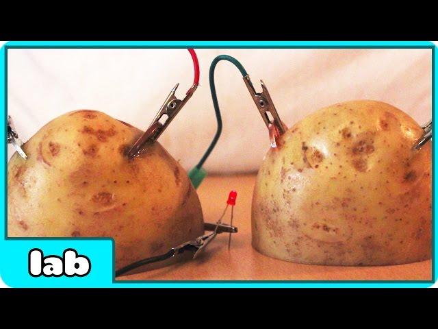 Parlayan Patatesler: Çocuğunuzla Yapabileceğiniz Harika Deney 51