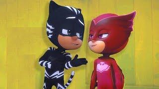 PJ Masks em Português | Sem Mais Menino Gato! | HD | Desenhos Animados