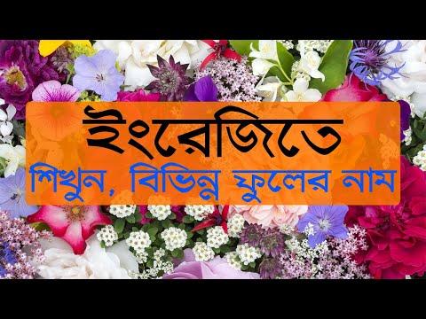ইংরেজিতে বিভিন্ন ফুলের নাম শিখুন   Flowers Name English and Bengali by IT Future