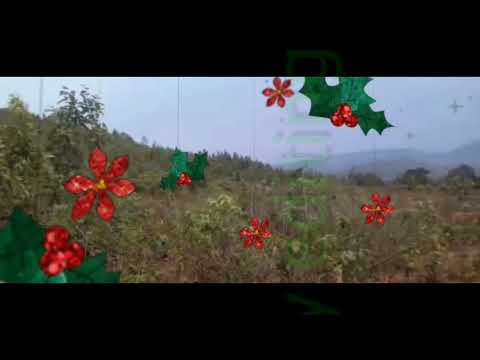 kandhamal billabadi video songs
