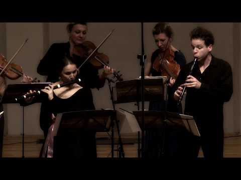 Telemann -  Concerto for recorder, flute, strings