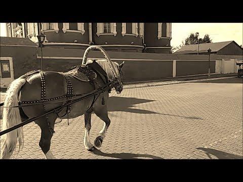Стихотворение Елисея Годочкина - Солнце блещет, солнце блещет... Сияние (читает актер Сергей Ларин)