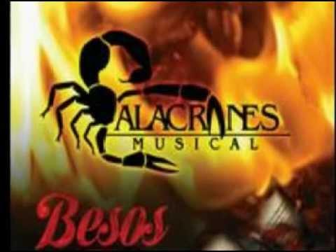 Besos De Fuego - Alacranes Musical 2012 (besos De Fuego)
