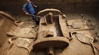 Top 10 Colleges - Archaeological Discoveries That Will Blow Your Mind