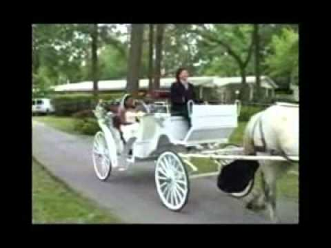Horse Drawn Carriages | Interactive Games | Inflatables | Party Rentals In Houston, Texas