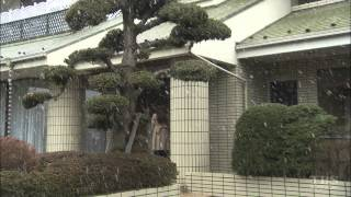 スナックの雇われママ・元子とその内縁関係の男・村田の遺体が発見された。...