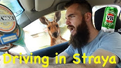 An Aussies Guide to Driving
