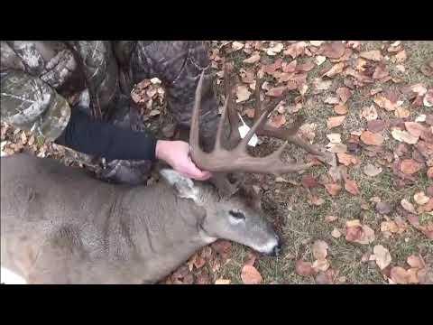 Deer Camp-2018