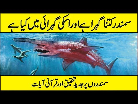 Latest Scientific Research On Sea - How Deep Is Ocean And Who Lives There In Urdu Hindi