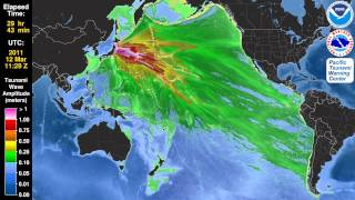 Tsunami Animation:  Tohoku, Japan 2011 (Mercator)