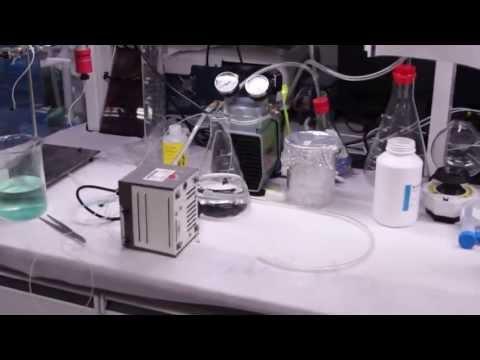 國立中興大學 - 生物科技學士學位學程2012招生宣傳影片 National Chung Hsing University