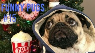 Best of Doug the Pug compilation 2017 | Смешные мопсы 2017 нарезка