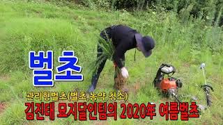 김진태 벌초달인팀의 추석벌초 홍보자료(비대면벌초)