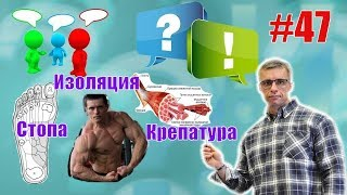 Частая крепатура. Изолирующие упражнения и Алексей Шредер. Стопа и сила. Восстановление. Ответы 47
