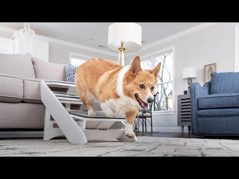 PetSafe® Improving Pet Access Around the Home with CozyUp™ Steps...