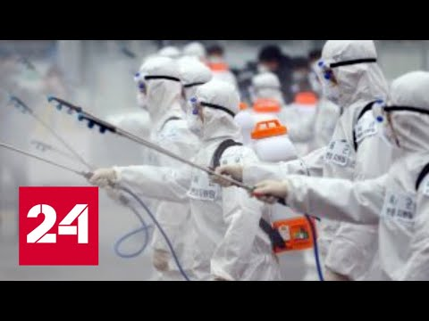 Вирус не выживет: когда пандемия COVID-19 сойдет на нет? - Россия 24
