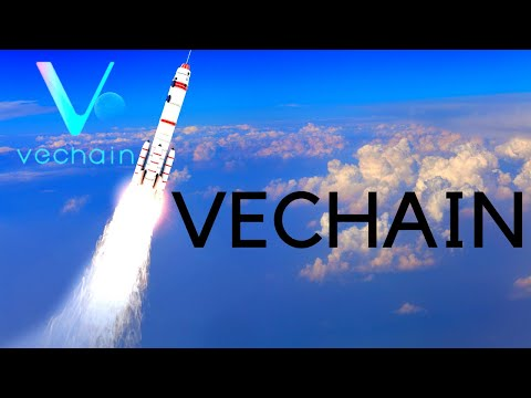VeChain WILL Be A Top 10 Cryptocurrency! VET TRILLION Dollar Market Cap Well Within Possibility!