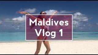 Ура, Мальдивы!Потеря чемодана.Акулы.Свадьба.