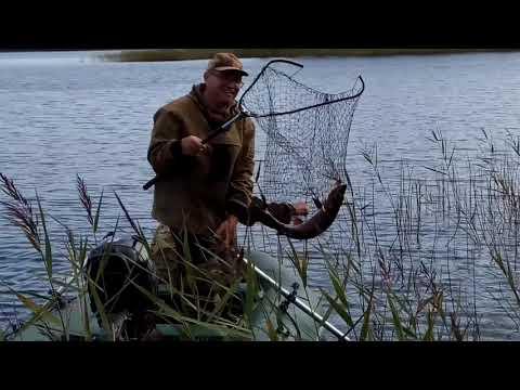 Рыбалка на озере Петусъярви в Карелии - ловим щуку