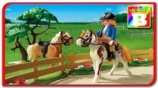 Playmobil Country 5227 + 4778. Sa învățăm animalele. ANIMALELE DOMESTICE ȘI SUNETELE LOR Bogdan