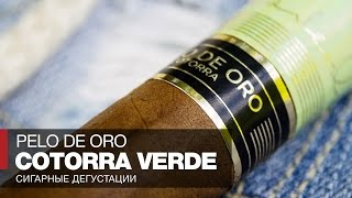 Курим российские сигары Pelo de Oro Cotorra Verde // Обзор и отзывы