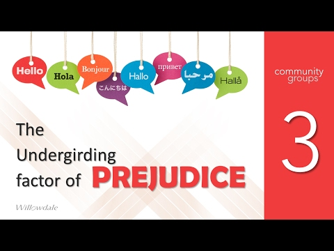 Conversations About Race Week03 The undergirding factor of the prejudice