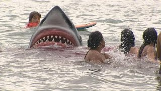 Câmera Escondida - Ataque Tubarão + Pum Elevador 20 07 2014 - Sílvio Santos