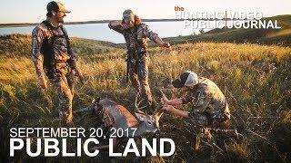 Public Land Day 7: Bedding Area Bow Kill, 10 Yard Shot | The Hunting Public