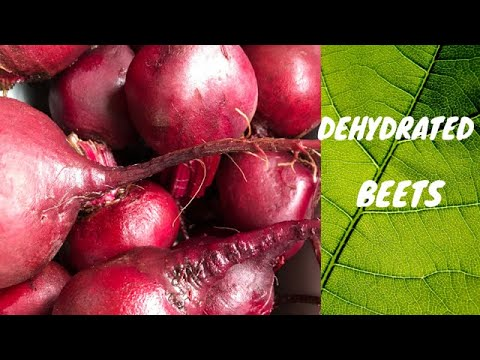 DEHYDRATED BEETS-What Can You Do With Them