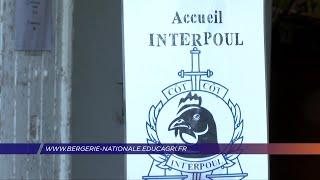Yvelines | Menez l'enquête à la Bergerie Nationale à Rambouillet !