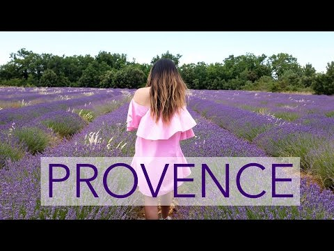 Lavender Fields, Food & Wine in Provence - France Travel Diary