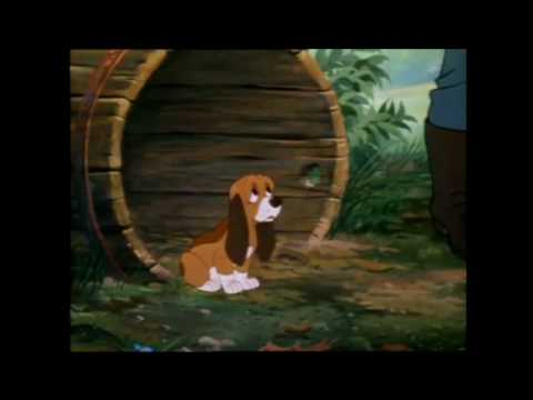 Fox and the hound: Todd meets Copper