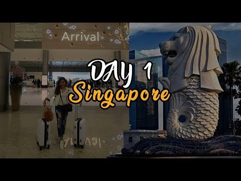 singapore-day-1|-first-time-international-travel|first-vlog