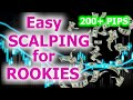 Insane Forex Strategy For Beginners (20 Pips A Day)