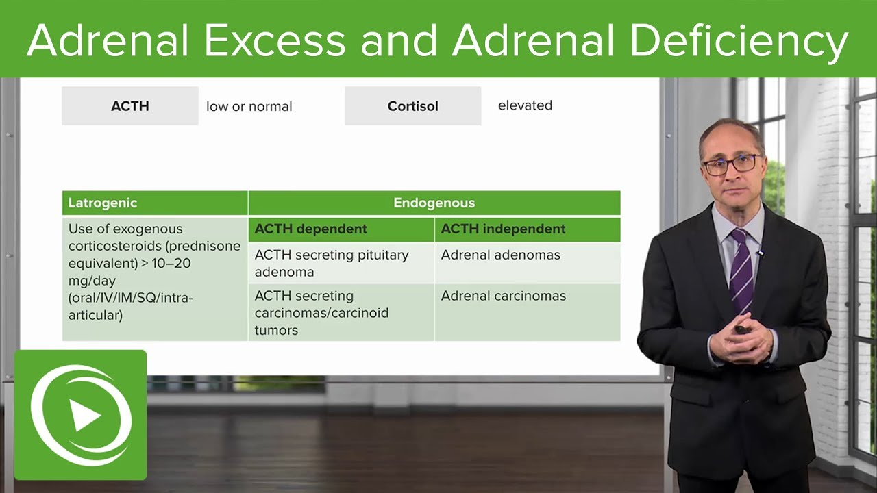 Adrenal Excess and Adrenal Deficiency – Endocrinology | Lecturio