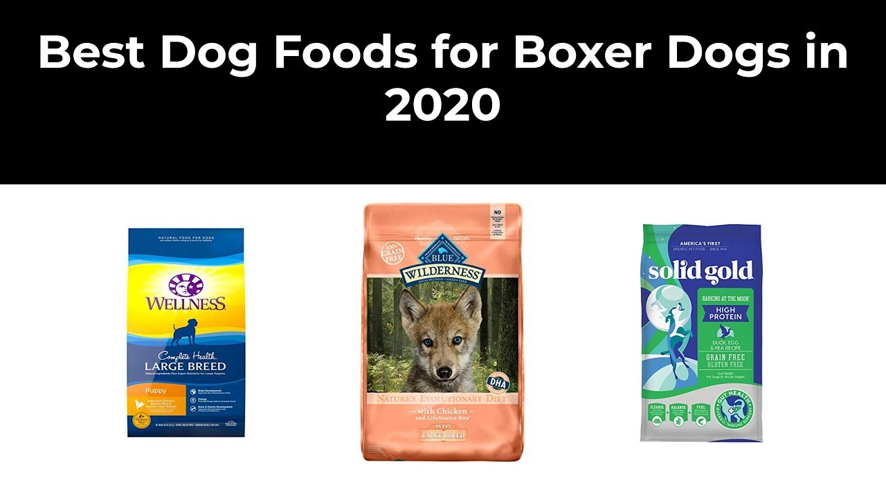 Best Dog Foods for Boxer Dogs in 2020
