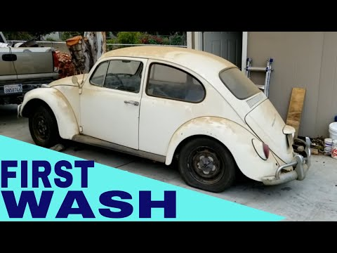 67 VW Bug clean up after first start in 23 years