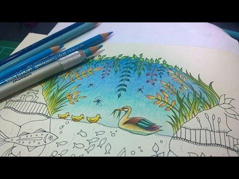 Colouring Tutorial Colour With Peta Duck Pond Part1