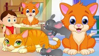 Billi Mausi Billi Mausi Kaho Kahan Se Aayi Ho - Hindi Rhymes | बिल्ली मौसी | Nursery Rhymes for Kids